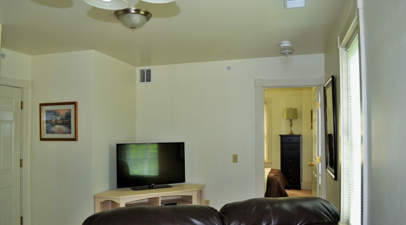 living-room24-830x460